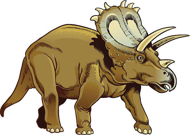 Best Triceratops Illustrations, Royalty.