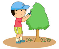 Search Results for trim tree.