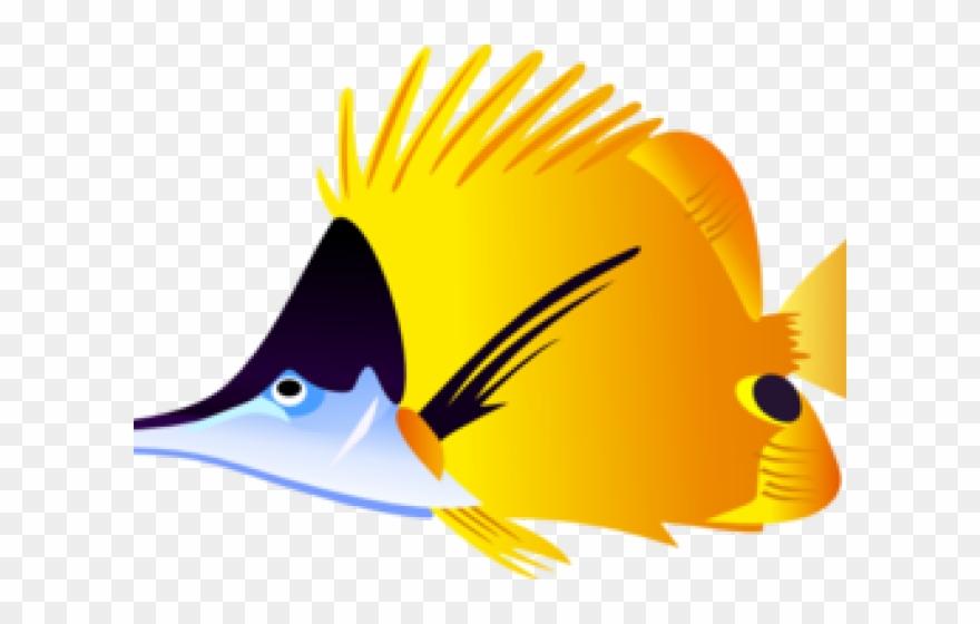 Tropical Fish Clipart Beta.