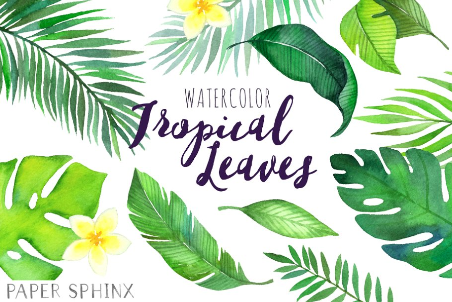 Watercolor Tropical Leaves Clipart.