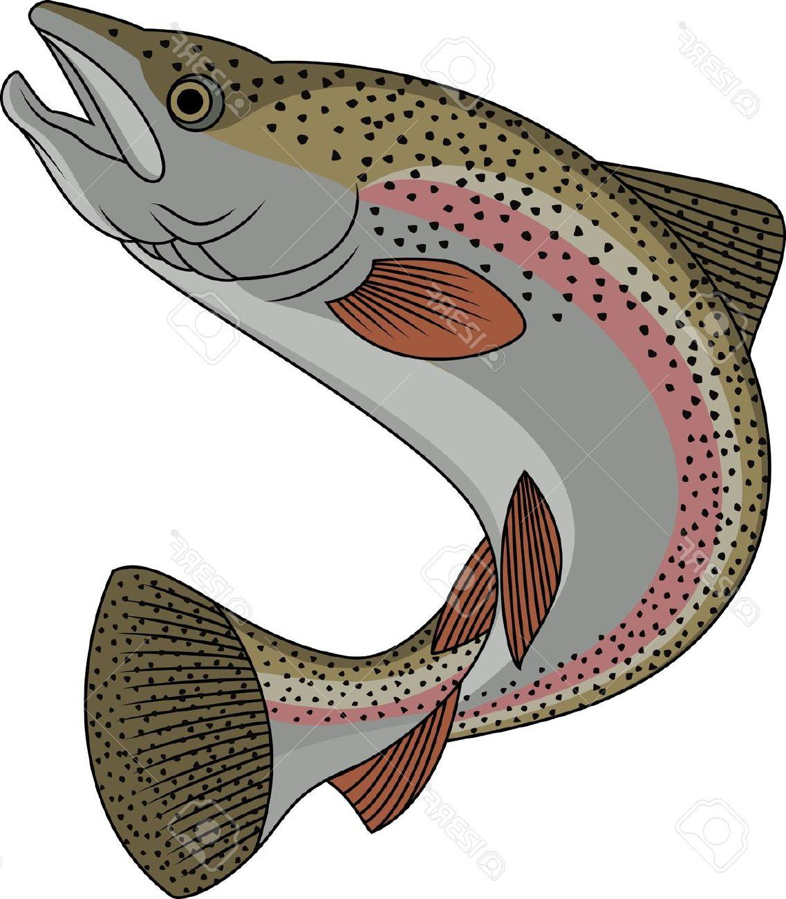 324 Trout free clipart.