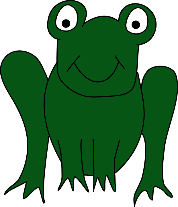 Toad True frog Clip art Tree frog.