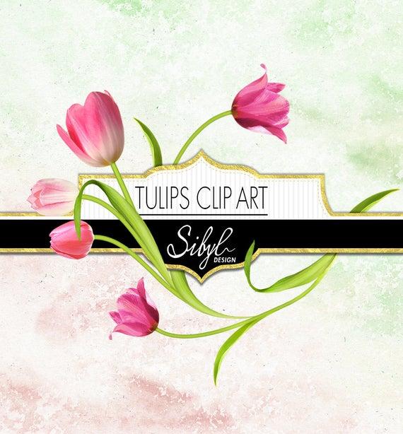 60% OFF SALE, Digital Tulips Clipart, Spring Flower Clip Art, Floral  Elements Clipart, Tulip Diy Clipart, Digital Scrapbooking Flowers, PNG.