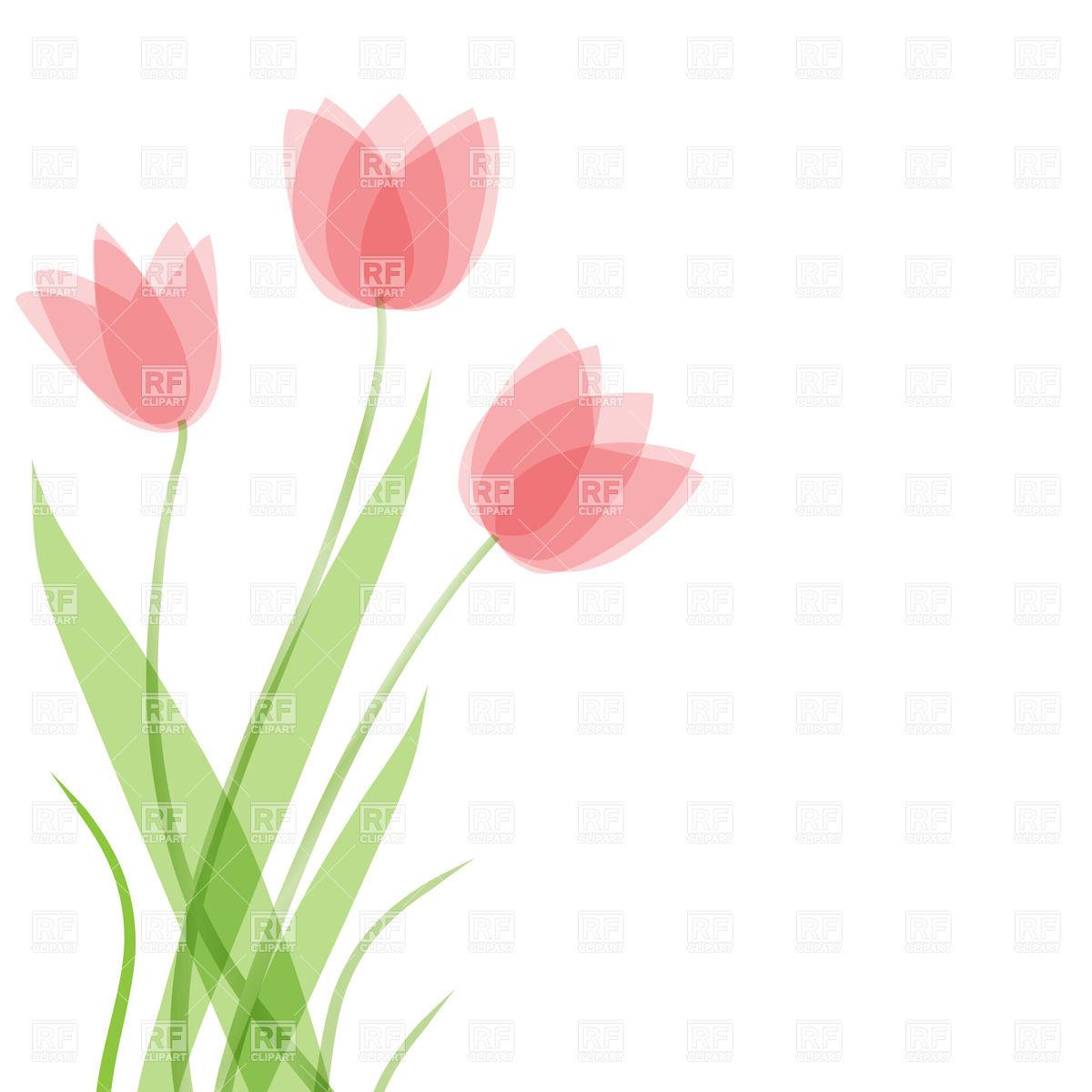 Three Tulip flowers Stock Vector Image.