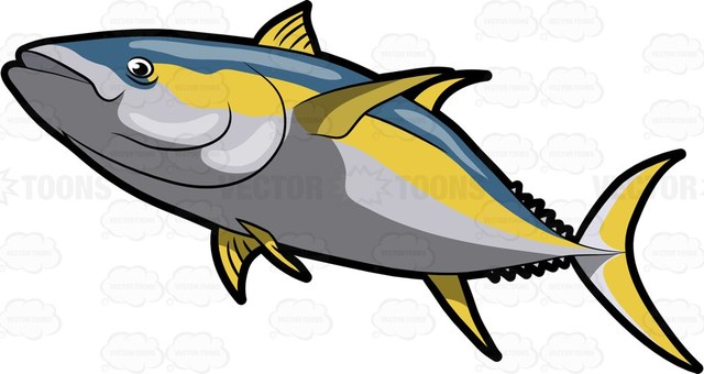 Tuna Fish Clipart at GetDrawings.com.