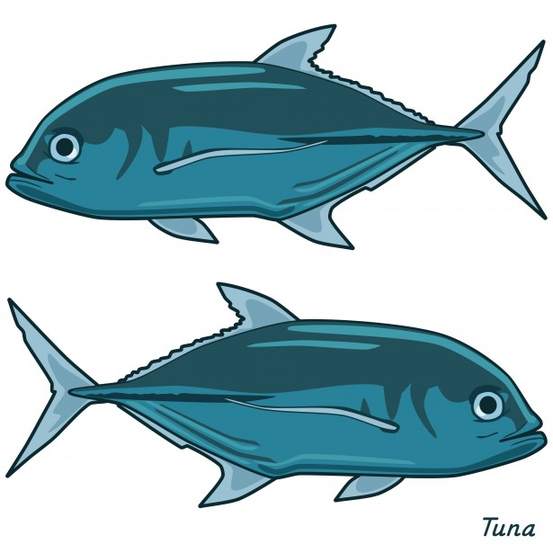 Free Tuna Cliparts, Download Free Clip Art, Free Clip Art on.