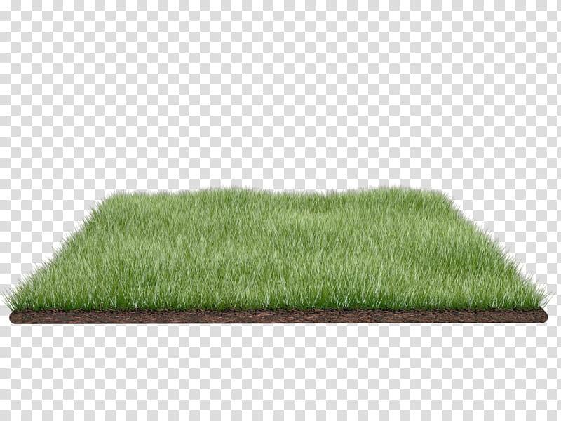 Grass field, turf grass illustration transparent background.