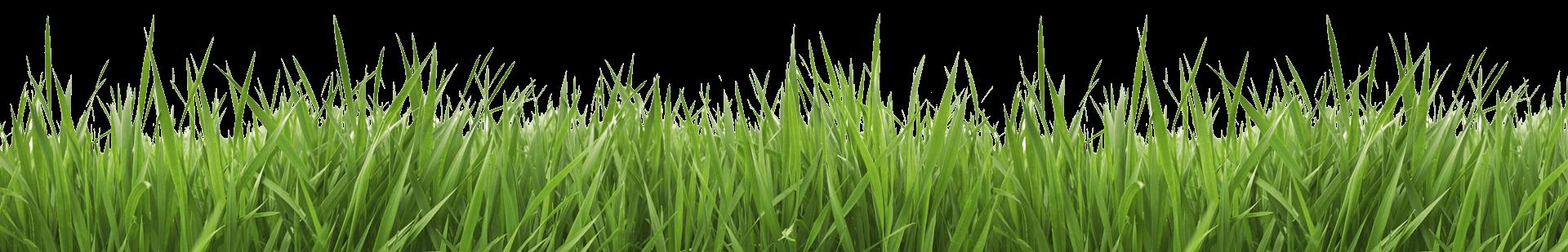 Lawn Care Clipart Free Download Clip Art.