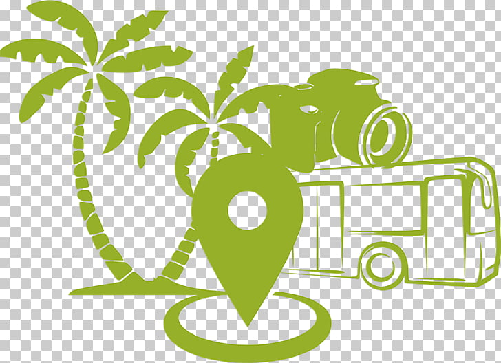 Arecaceae Wall decal Tree , gran turismo PNG clipart.
