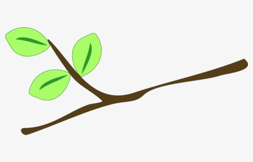 Free Twig Clip Art with No Background.