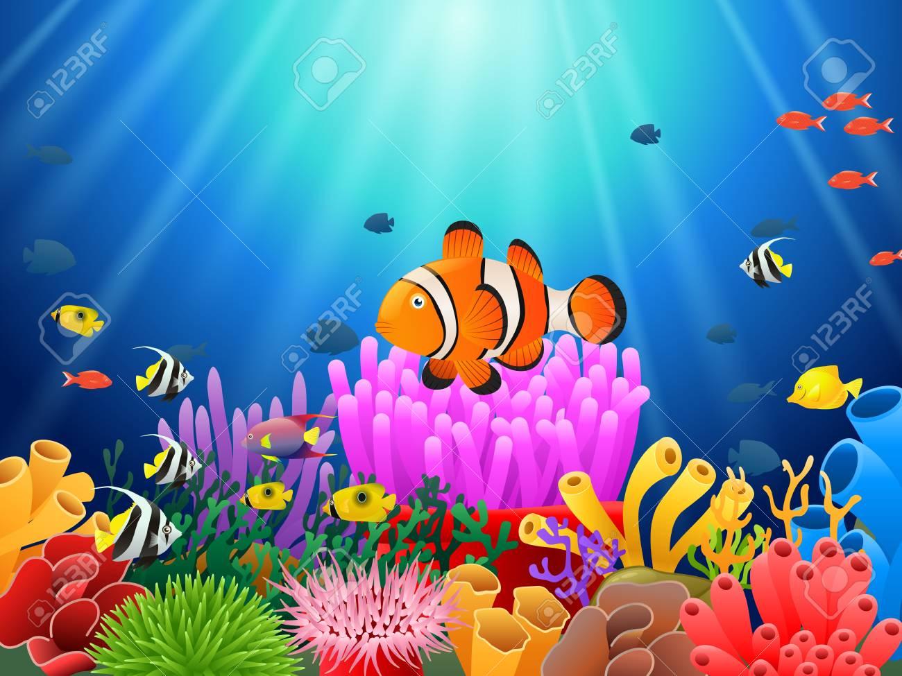 Clown Fish under the sea.