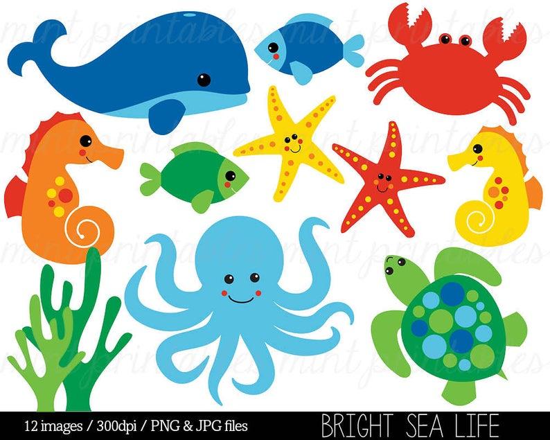 Sea Animal Clipart, Under the Sea, Baby Sea Creatures Clip Art, Animal  Clipart Whale Ocean Crab.