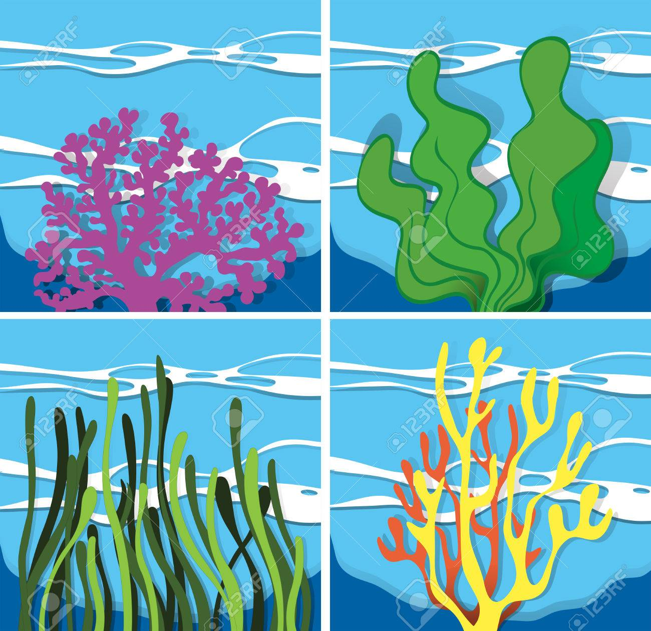 Coral reef under the sea illustration.