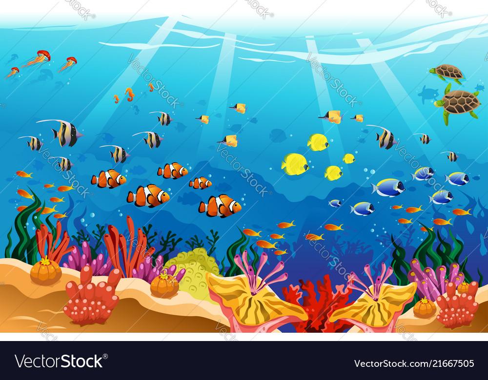 Marine underwater scene.