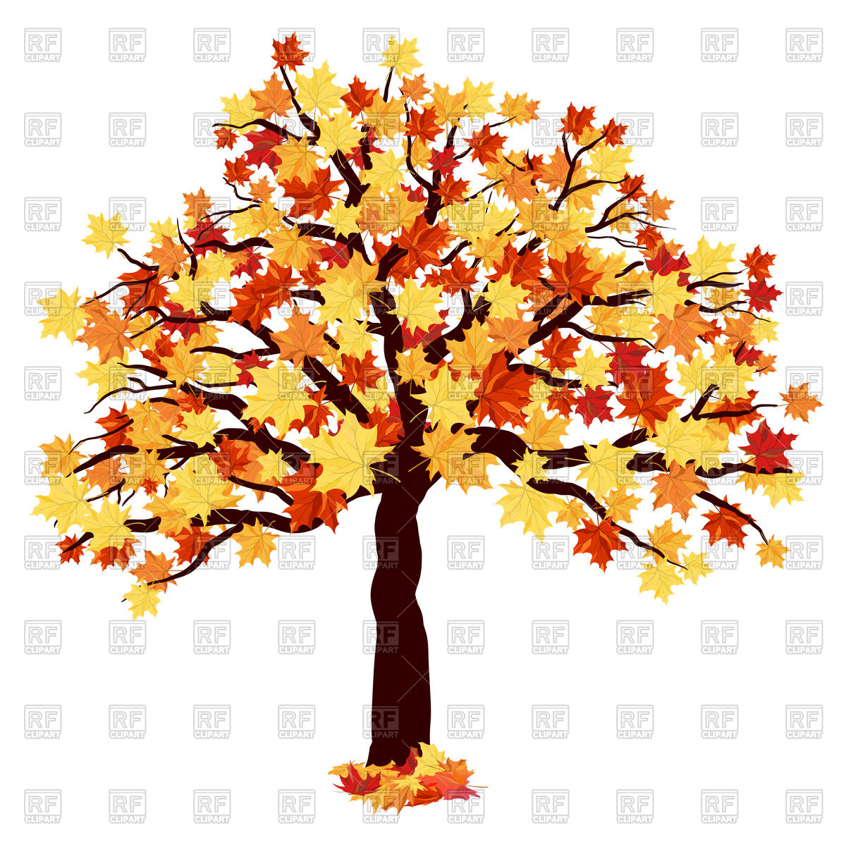Autumn maple tree Vector Image #110614.