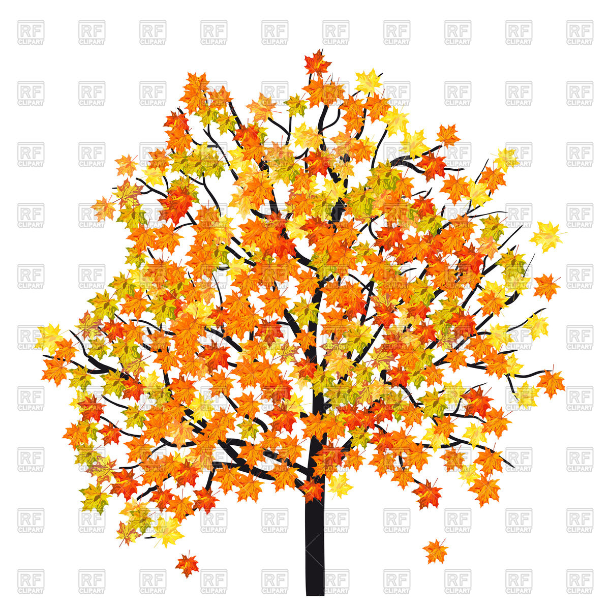 Autumn maple tree Vector Image #108025.