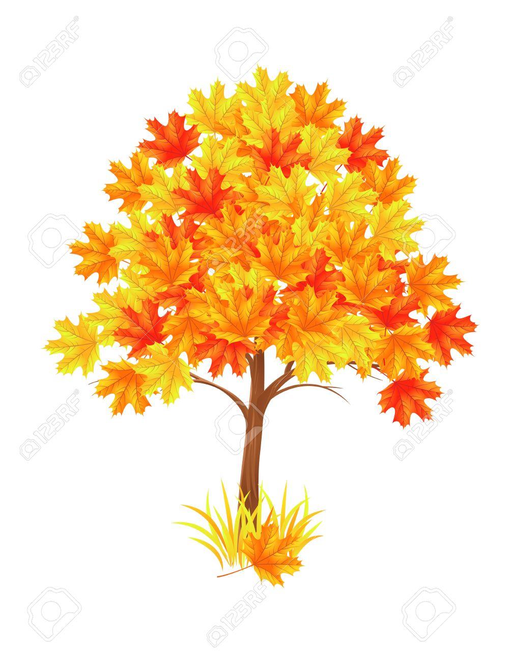 The Red Maple Tree. Vector Illustration Royalty Free Cliparts.