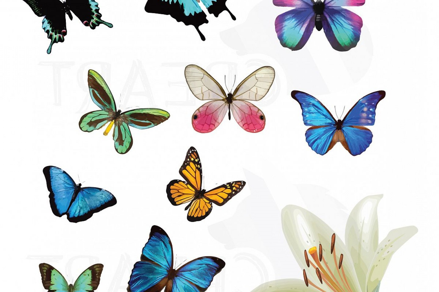 Watercolor Butterflies Clipart Pack Vectors For Commercial.