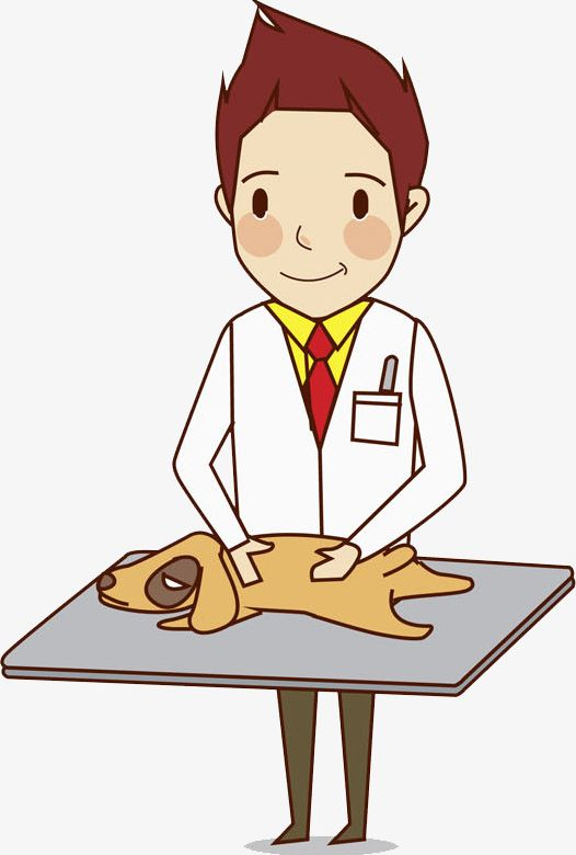 Hand Drawn Veterinarian PNG, Clipart, Cartoon, Doctor, Drawn.