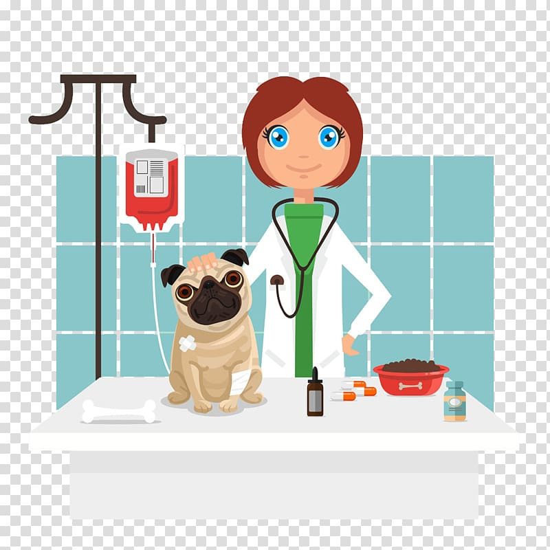 Female veterinarian , Dog Veterinarian , Cartoon pet dog and.