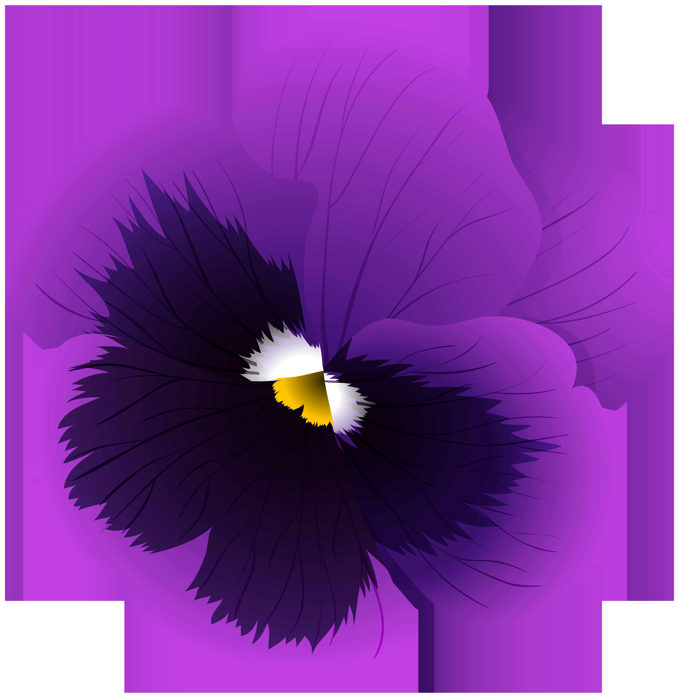 Violet Flower Transparent PNG Clip Art Image.