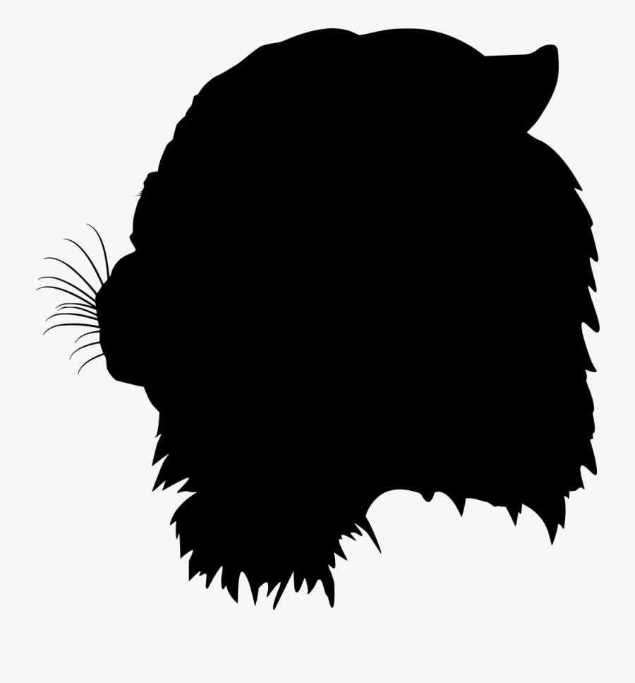 Wildcat Eyes Clipart , Free Transparent Clipart.