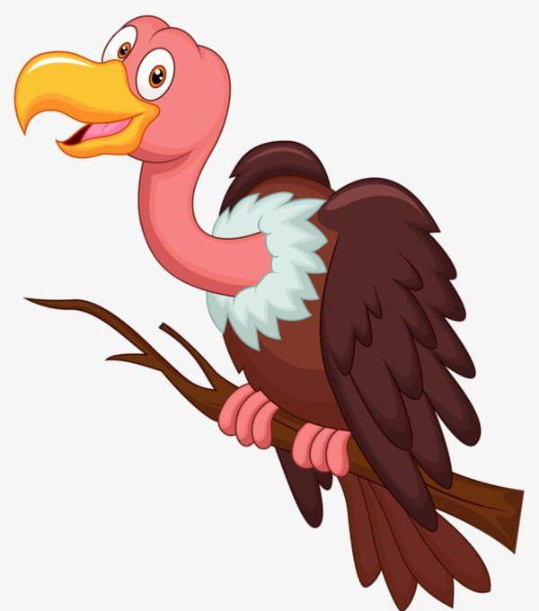 Cartoon Vulture PNG, Clipart, Animal, Bird, Cartoon Clipart.