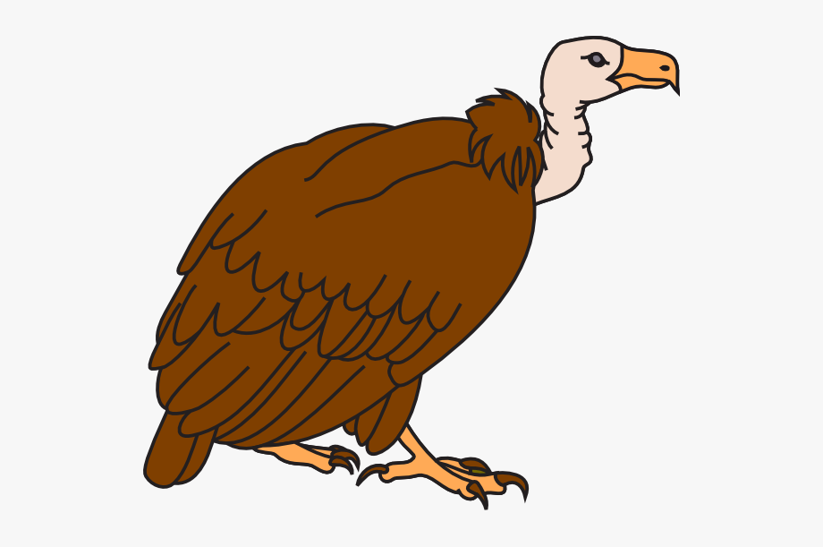 Vulture Clipart , Transparent Cartoon, Free Cliparts.
