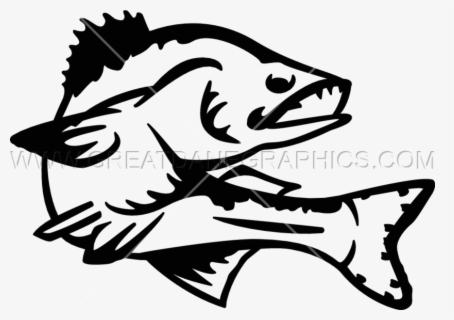 Free Walleye Clip Art with No Background.