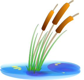 Uses Of Water For Watering Plants Clipart.