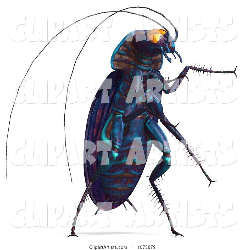 3d Purple Waterbug Cockroach Insect 4 Clipart by Ralf61 (pmrk).