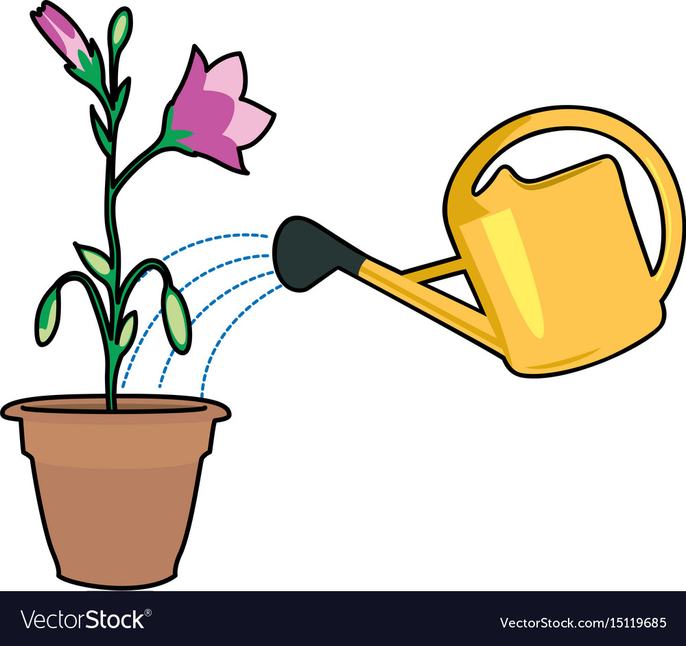 Plants and watering can.