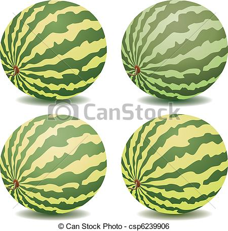 vector collection of watermelons.
