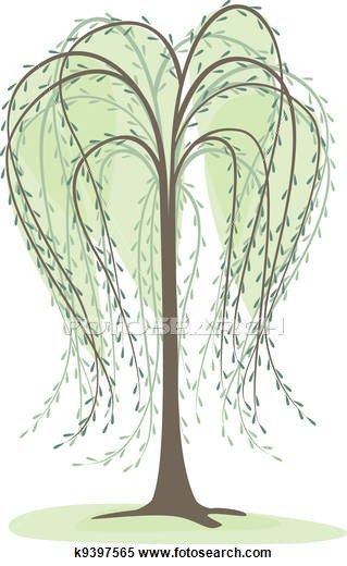 Willow tree Illustrations and Clipart. 225 willow tree.