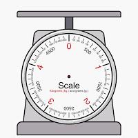 Project: Does It Measure Up? Metrics vs US Measurements.