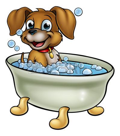 Wet clipart wet dog, Wet wet dog Transparent FREE for.