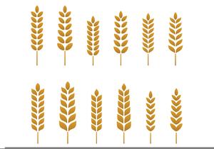 Free Wheat Stalk Clipart.