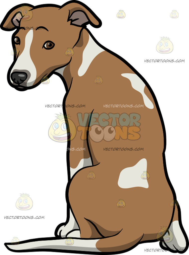 Showing post & media for Cartoon whippet clipart.