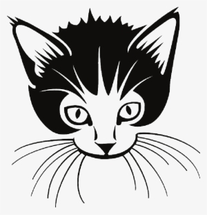 Whiskers Png PNG Images.
