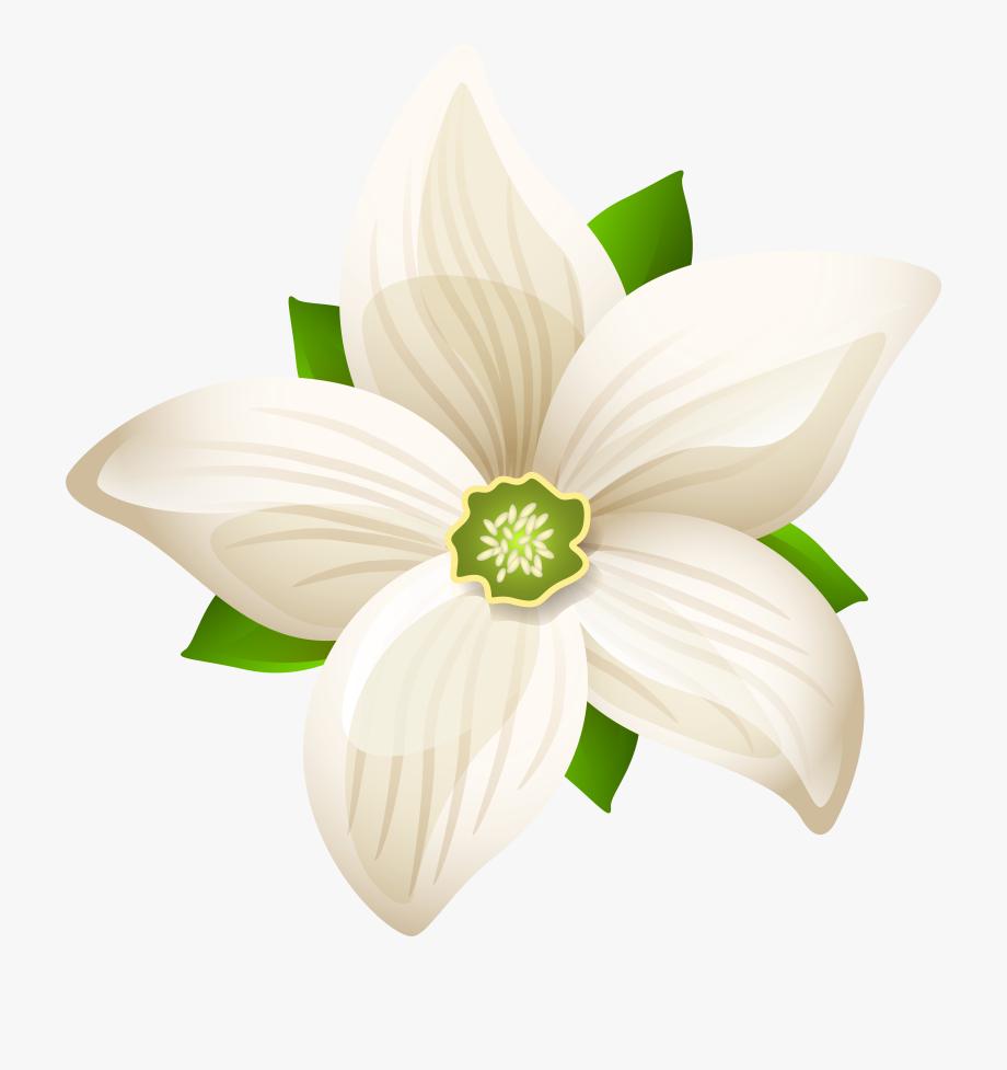 White Flower Clipart Flower Black White Md #107817.
