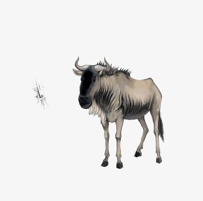 Wildebeest PNG, Clipart, Animal, Wildebeest, Wildebeest.