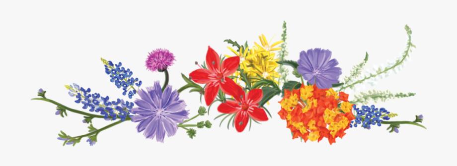 Wildflower Clipart , Transparent Cartoon, Free Cliparts.