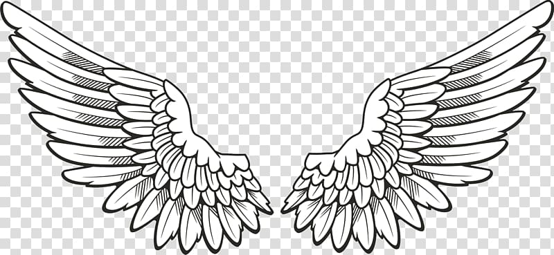 Icon Wing , Wings , pair of feather wings artwork.