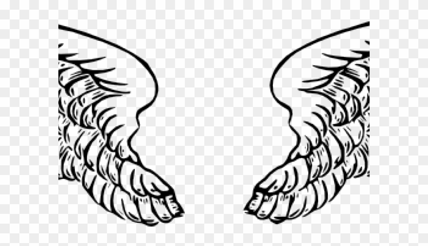 Wings Clipart Vector.