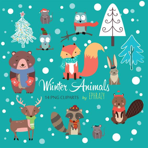 Winter animals clipart. Forest animals clipart. Woodland animals  clipart.Cute animals clipart.Animal clipart. Fox clipart..