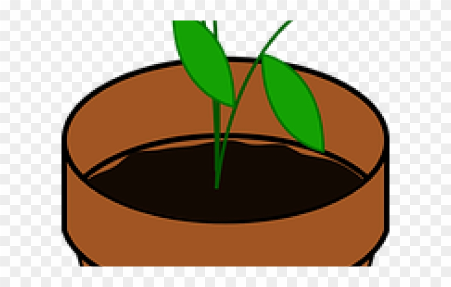 Potted Plants Clipart Transparent Background.