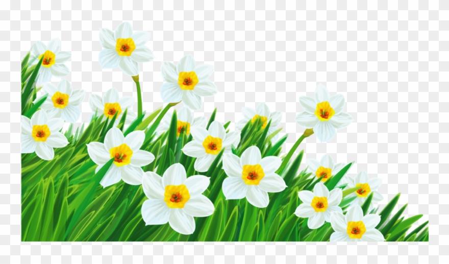 Daffodil Clipart Spring Break 2 Clip Art Free.