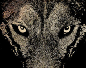 Gray Wolf Eyes Png Digital Stamp Graphics Clip Art Download Wolves.