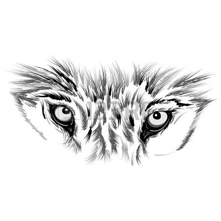 860 Frightened Eyes Cliparts, Stock Vector And Royalty Free.