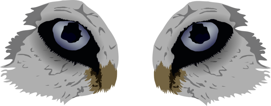 Wolf Eyes by WolfGuardian2 on DeviantArt.